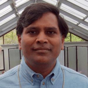 https://indooragtechnyc.com/wp-content/uploads/2018/03/IAT-NYC-speaker-Sekhar-Boddupalli.png
